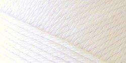 Caron Simply Soft Eco Yarn 5 oz skein ~ Soft White 0001