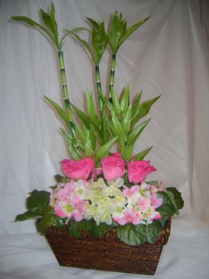 Rima  Roses with Hydrangeas