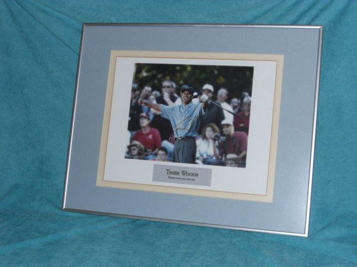 TIGER WOODS Framed 16 x 20 Picture