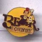 Disney Bear Country Pin-Pins