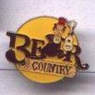 Disney Bear Country Pin-Pins