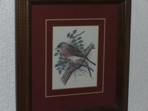 PH Gonner Bird Print Signed & Framed