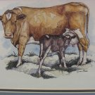 Guernsey Cow with Calf  Lynn Bean Print