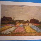Vincent Van Gogh FLOWER BEDS IN HOLLAND Art Print
