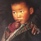 Sonam, Sheperd&#39;s Son in Tibet Postcard by Olivier Follmi