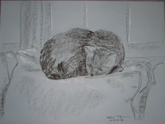 Original Conte Crayon Drawing Cat sleeping by window Art by LJT