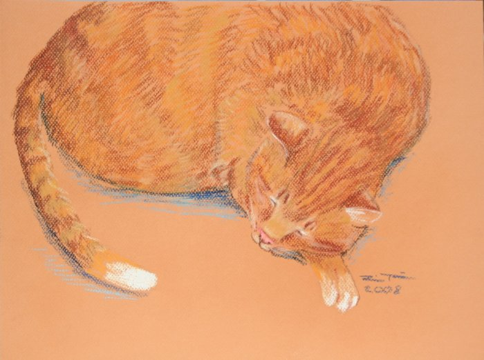 Original Pastel drawing Sleeping Orange Tabby Cat on toned paper Art by LJT