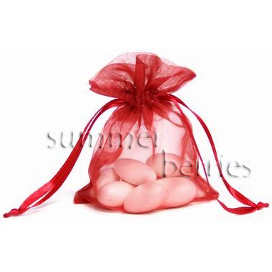 Organza Sachet Favor Bag / Bags - 4x6.5 Red (Set of 10)