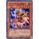 YuGiOh Japanese Card 303-005 - Amazoness Paladin [Common]