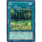 YuGiOh Japanese Card DL2-027 - Forest [Common]