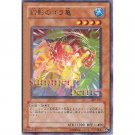 YuGiOh Japanese Card 307-011 - Gora Turtle of Illusion [Common]