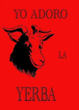 YERBA T-SHIRT