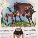 1941 Bosco Milk Amplifier Original Vintage Advertisement with Nice Art Drawing of Cow and Calf