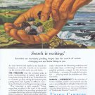 1955 Union Carbide Original Vintage Advertisement Search for Treasure
