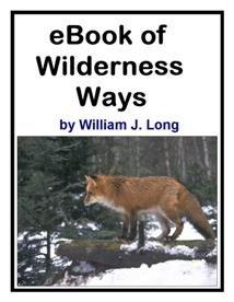 eBook of Wilderness Ways