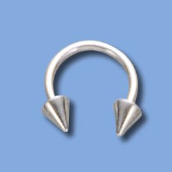 Horseshoe with Spikes (BCSN)