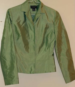 Silk Light Green Blazer From Ann Taylor