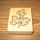 PSX Leaf Trio Wood Mounted Rubber Stamp G-3101 Retired Collectible