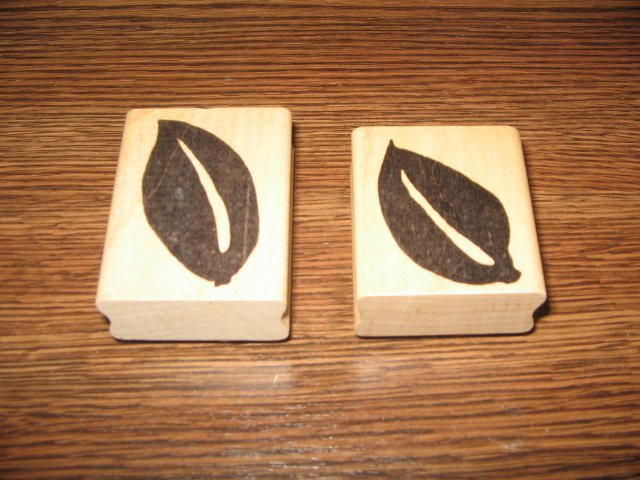 Bold Leaves Wood Mounted Rubber Stamp Lot by Hot Potatoes