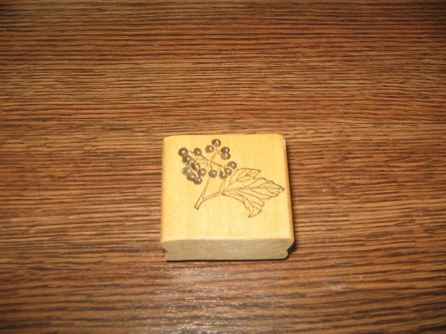 Berries On Branch Wood Mounted Rubber Stamp