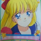 SAILOR MOON  CARDDASS WORLD EX-3  SAILORMOON  EX3 CARD 21