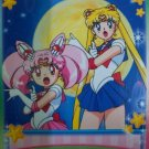 SAILOR MOON  CARDDASS WORLD EX-3  SAILORMOON  EX3 CARD 31