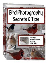 Bird Photography by Kris Williams - Resell eBook!