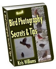 Bird Photography Secrets and Tips by Kris Williams - Resell eBook