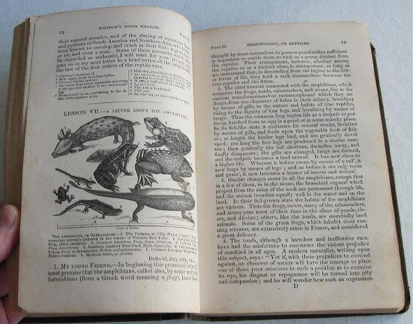 Fifth Reader of the School and Family Series c.1861 by Willson Science History Illustrated Textbook