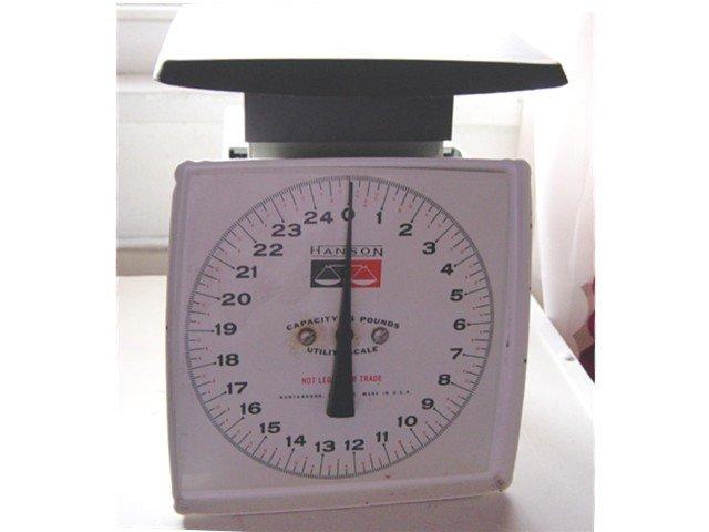 Vintage Hanson Utility Scale 25 Lb. Capacity #100004