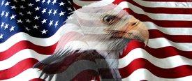 American Flag 2 w/ Eagle - Car Window Perf