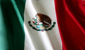 Mexican Flag - SUV Window Perf