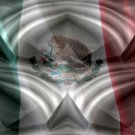 Mexican Flag w/ Chrome - Car Window Perf