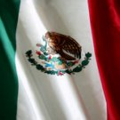 Mexican Flag - Car Window Perf