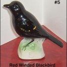 Red Winged Blackbird   Canadian Tenderleaf Tea Bird