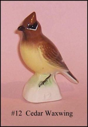 Cedar Waxwing  Canadian  Tenderleaf  Tender leaf Tea  Premium Bird Number 12