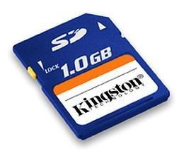 Kingston 1GB Secure Digital Card