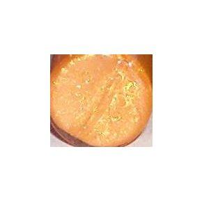 Mini Lip Gloss-  Orange Socket :: LAST DAY, Leaving 3/17!)
