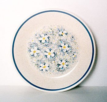 Lenox DEWDROPS Bread Butter Plate Temperware USA