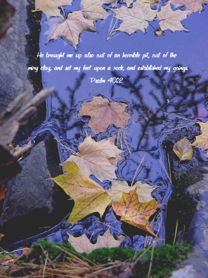 "Fall Wonder**""8"" x10"" Matted Origianl Photo**Psalm 40:2"