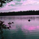 """Magenta Sunset*8""""x10"""" Matted origianl Photo"""