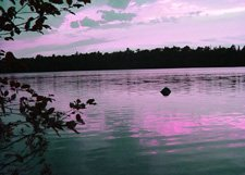 "Magenta Sunset*8""x10"" Matted origianl Photo"