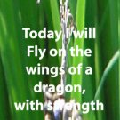 Dragonfly**inspirational