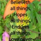 Flowers of the Field***Biblical/Corinthians 13: 4-6