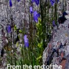 Horseshoe Flowers and Rocks***Biblical/Psalm 61:2