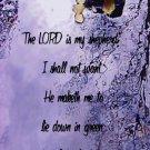 Eagle River Tree Silhouette***Biblical/Psalm 23:1,2