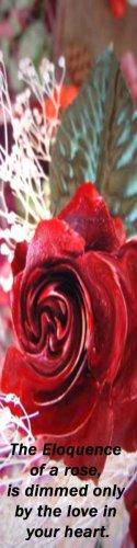 Wooden Rose, Eloquence**Inspirational