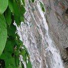 Jacob's Falls*Pool of Life**Inspirational