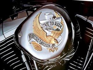 Harley Davidson Motorcycle Chrome Engine Detail Poster