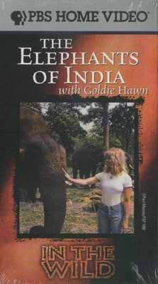 PBS The ELEPHANTS of INDIA with GOLDIE HAWN New